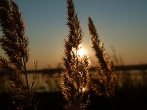 sunset-193304_640